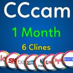 cccam1m